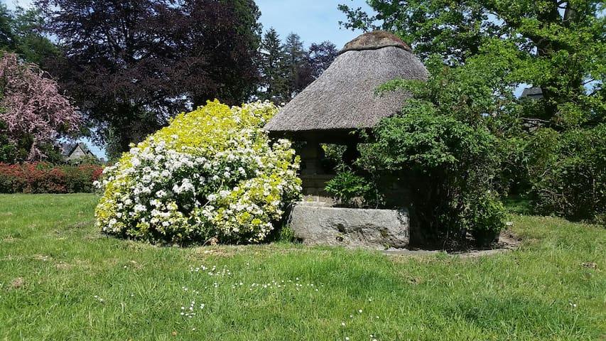 GreenGo - La Tiny House du Parc 12