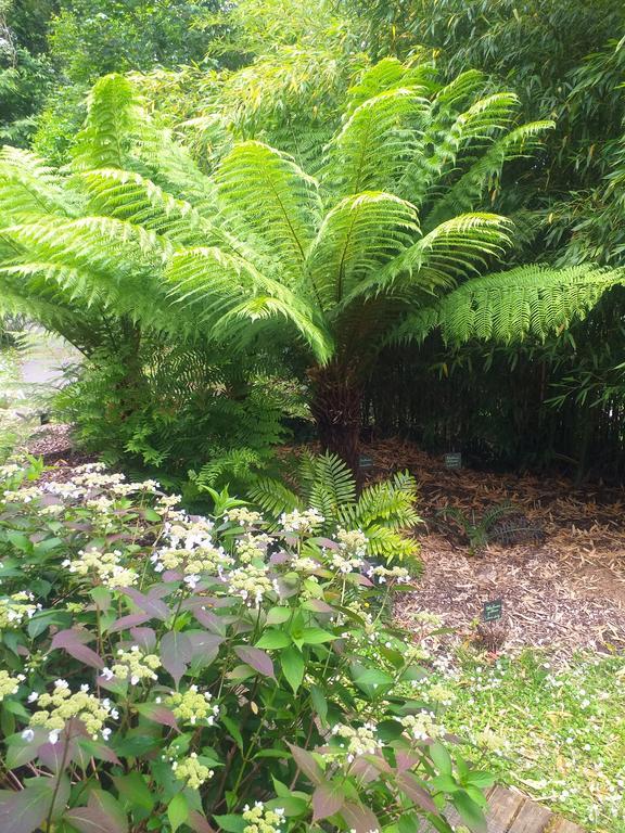 GreenGo - Un Jardin en Pente Douce 24