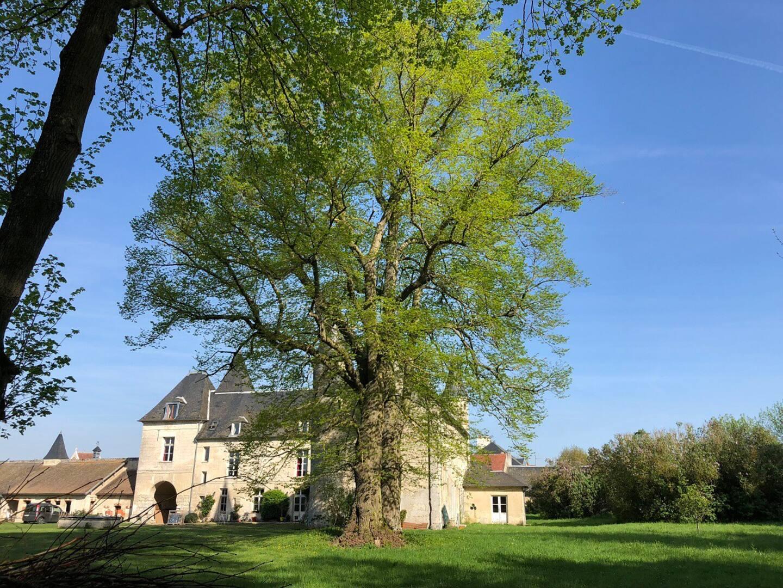GreenGo - Le château de Coyolles 20