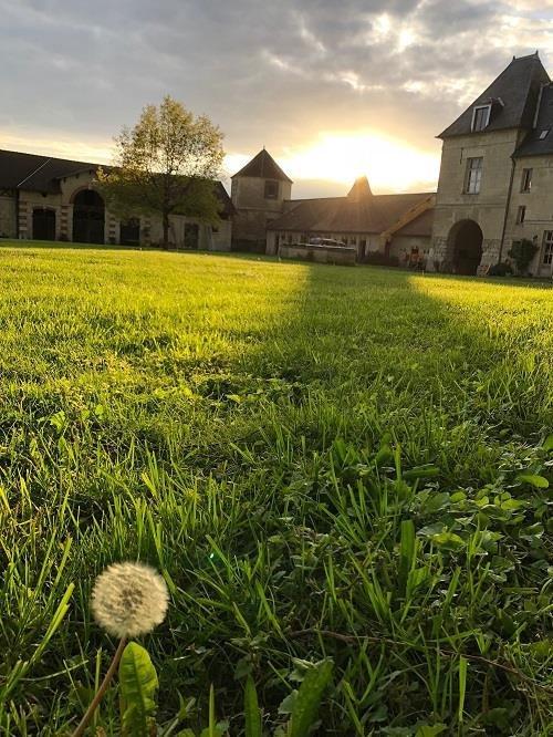 GreenGo - Le château de Coyolles 24